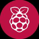 raspberry-logo